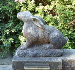 HARE, ONE OF TWO